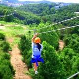 Zipline Above the Trees!
