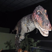 The Fierce Allosaurus!
