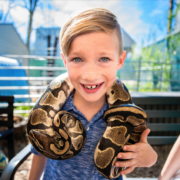 Incredible Exotic Animal Encounters!