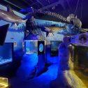 Ocean Animals Exhibit