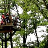 Ziplining Platform