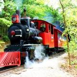 Frisco Silver Dollar City Train