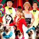 Amazing Pets Show!