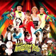 Amazing Pets Show