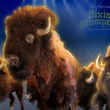Stampede of the Buffalo!