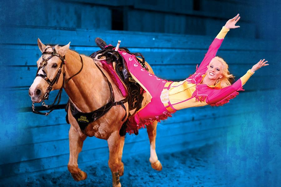 Dolly Parton S Stampede Branson Call 1 800 504 0115