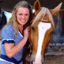 LIVE Horses!