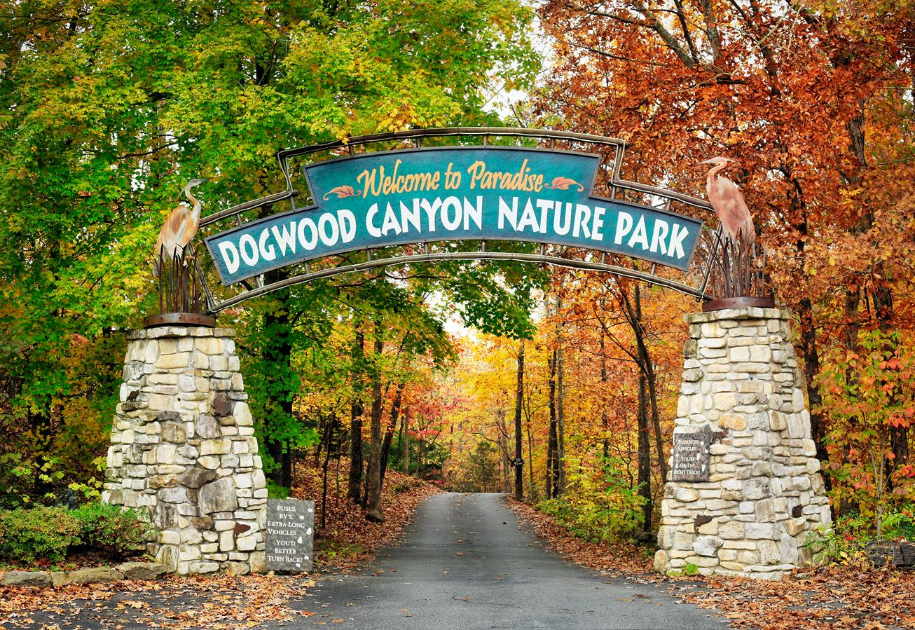 dogwood canyon branson mo call 1 800 504 0115