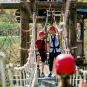 Suspension Bridges above the Ozark Forests!