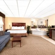 King Jacuzzi Room (In-Room Hot Tub)