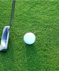 Don gardner golf course branson mo the travel office for Gardner golf course