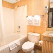 Hotel Room Bathroom & Vanity