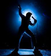 Elvis LIVE! (Starring Jerry Presley)