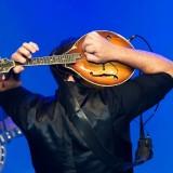 Mandolin Playing