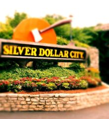 Silver Dollar City Package: (Tickets + Hotel)