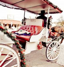 Carriage Rides of Branson