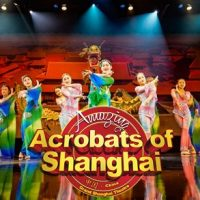 The Amazing Acrobats of Shanghai!