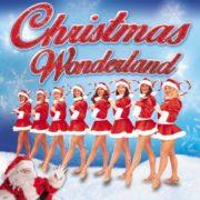 Celebrate With Christmas Wonderland Show!