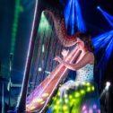 Beautiful Harp!