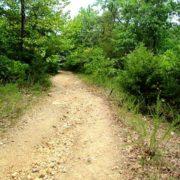 eagles-nest-resort-lake-trail