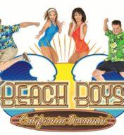 Beach Boys California Dreamin'