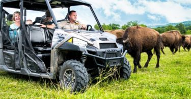 Promised Land Zoo in Branson expands with 65 acres of additional wildlife habitats, tram tours, and more.
