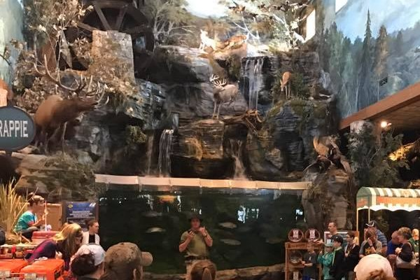 The Bass Pro Shops at Branson Landing is home to a freshwater aquarium that is free to view and showcases some of the local fish of Missouri
