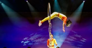 Branson's Best Acrobatic Shows