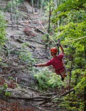 Zipline Canopy Tours at Shepherd of the Hills