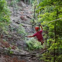 Zipline Through the Ozarks!