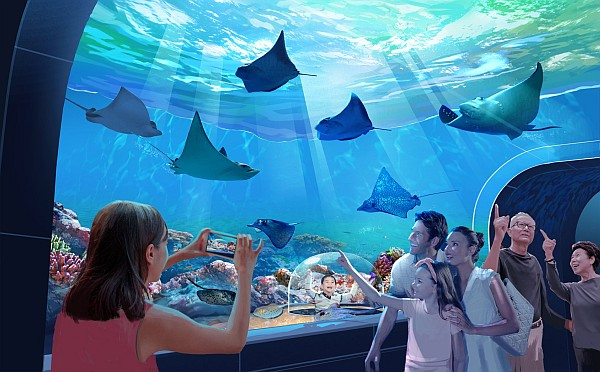 Featuring viewing tunnels and interactive exhibits and displays, Branson's new aquarium will offer a one-of-a-kind experience!